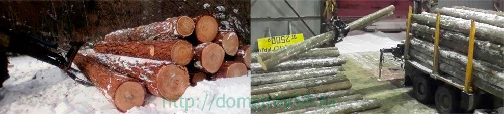 срубы из зимнего леса Пермский край